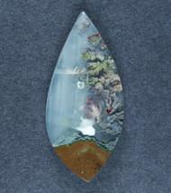 Amazing Priday Plume Agate Designer Cabochon  #18023