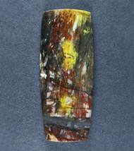 Unusual Tuscarora Petrified Wood Designer Cabochon  #18024