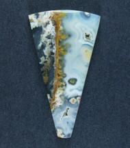 Fantastic Eagle Rock Moss/Plume Agate Cabochon  #18071