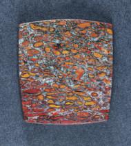 Multi-colored Dinosaur Bone  Cabochon- Red and  Orange  #18102