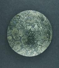Gorgeous! Malibu Plume Marcasite Agate Cabochon  #18117