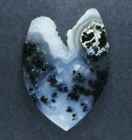Exceptional Marfa Black Plume Agate Designer Cabochon  #18122