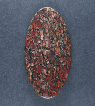 Multi-colored Dinosaur Bone Cabochon- Red, Yellow and Orange  #18183