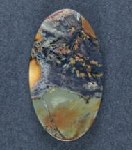 Amazing Priday Plume Agate Designer Cabochon  #18193