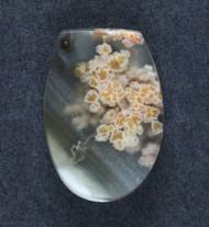 Amazing Priday Plume Agate Designer Cabochon  #18206