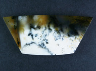 Gorgeous Old Stock Spanish Point Dendritic Agate Cabochon #18225