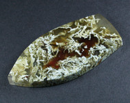 Exceptional Lucky Strike Moss Agate Cabochon   #18229