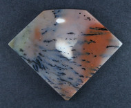 Exceptional Snake River Dendritic Agate Cabochon  #18247