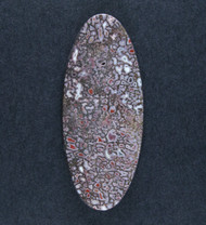 Beautiful Pink and Red Agatized Dino Bone Cabochon  #18342
