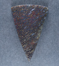 Multi-colored Gem Dinosaur Bone Cabochon- #18355