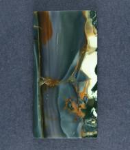 Outstanding Blue Mountain Jasper Designer Cabochon  #18378