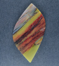 Colorful Arizona Rainbow Wood Designer Cabochon  #18416
