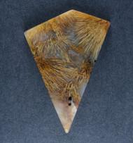 Gorgeous Designer Cabochon of Nipomo Sagenite Agate  #18458