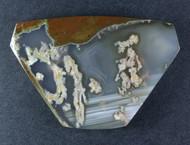 Amazing Priday Plume Agate Designer Cabochon  #18474