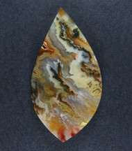 Gorgeous Graveyard Point Plume Agate Collectors Cabochon  #18544