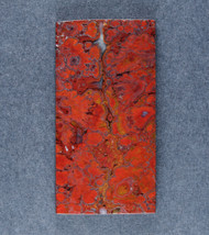 Dramatic designer cabochon of Cadys Red Plume Agate   #18559