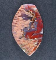 Colorful Coyomito Agate Cabochon- Amazing Psuedomorphs   #18625
