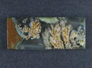 Amazing Priday Plume Agate Designer Cabochon  #18721