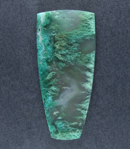 Blue/Green Plume Chrysocolla in Agate Cabochon  #18884