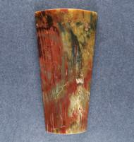 Unusual Tuscarora Petrified Wood Designer Cabochon  #19017