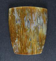 Gorgeous Petrified Coconut Palm Designer Cabochon  #19022