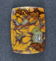 Exceptional Old Stock Stone Canyon Jasper Cabochon   #19078