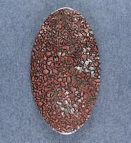 Agatized Dino Bone Cabochon- Red and Black  #19309