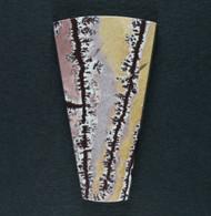 Gorgeous Sonoran Dendritic Rhyolite Designer Cabochon  #19445