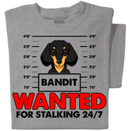 Wanted for Stalking 24/7 | Personalized T-shirt | Sport Grey T-shirt Dachshund