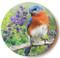 Summer Bluebird Sandstone Ceramic Coaster   Front View