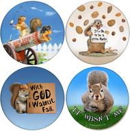 Squirrel Variety Pack | Sandstone Ceramic Coasters | 4 Pack