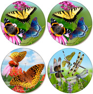Butterflies & Dragonfly Coaster Variety Pack | Sandstone Coasters | Jim Rathert Photography | 4 pack
