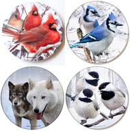 Winter Birds Coaster Variety Pack | Sandstone Coasters | Jim Rathert Photography | 4 pack