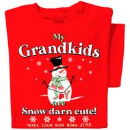 My Grandkids are Snow Darn Cute!