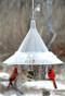 The BEST Mandarin Bird Feeder A la Carte - includes dividers