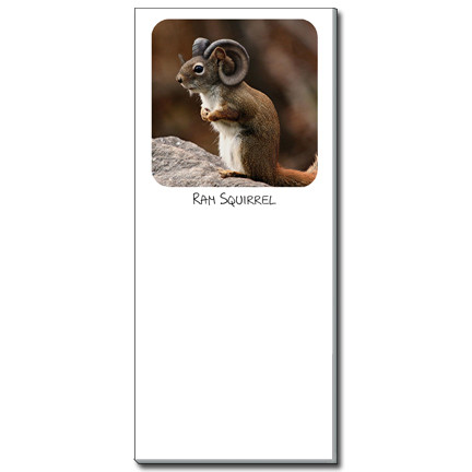Ram Squirrel Notepad | Funny Squirrel Magnetic Shopping List
