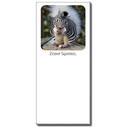 Zebra Squirrel Notepad | Funny Squirrel Magnetic Shopping List