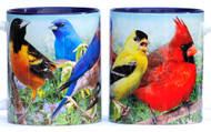 Summer Colorful Birds Mug | Jim Rathert Photography