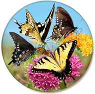Variety Butterfly Pink Orange Flower Sandstone Ceramic Coaster | Front