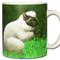 Sheep Squirrel *Ovisciurus pacificus Mug   Funny Squirrel