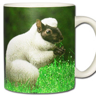 Sheep Squirrel *Ovisciurus pacificus Mug | Funny Squirrel