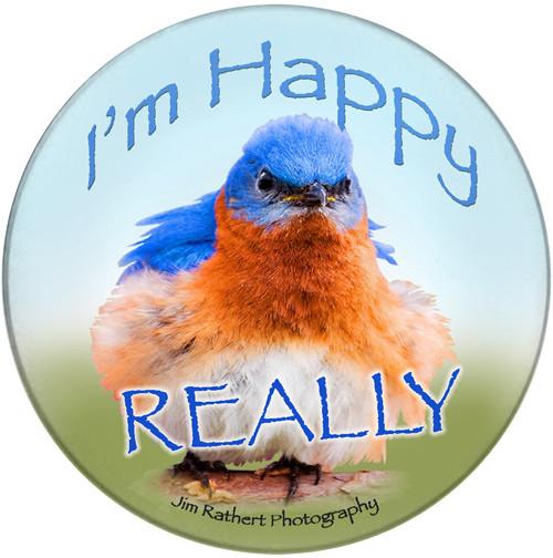 I'm happy really sandstone ceramic coaster   Bluebird Coaster   Front
