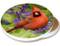 Summer Cardinal Sandstone Ceramic Coaster   Image shows front and cork back