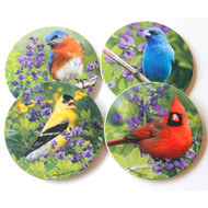 Summer Birds Sandstone Coaster Collection | Set of 4