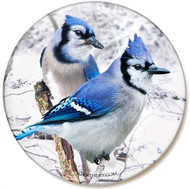 Winter Blue Jay Sandstone Ceramic Coaster | Front