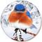 Winter Bluebird Sandstone Ceramic Coaster | Front