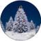 Squirrel Christmas Tree Sandstone Ceramic Coaster   Christmas Coaster