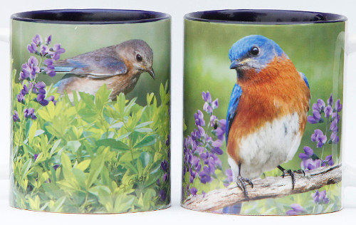 Summer Bluebird Mug | Jim Rathert Photography | Bird Mug
