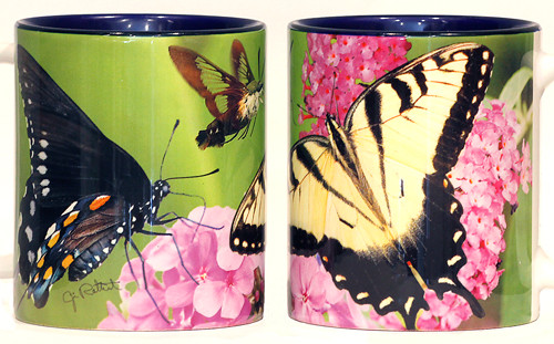 Variety Butterfly Mug with Flox Flowers | Jim Rathert Photography