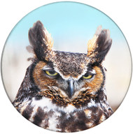 Great Horned Owl Sandstone Ceramic Coaster | Front